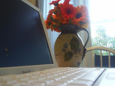 ibflowers.JPG